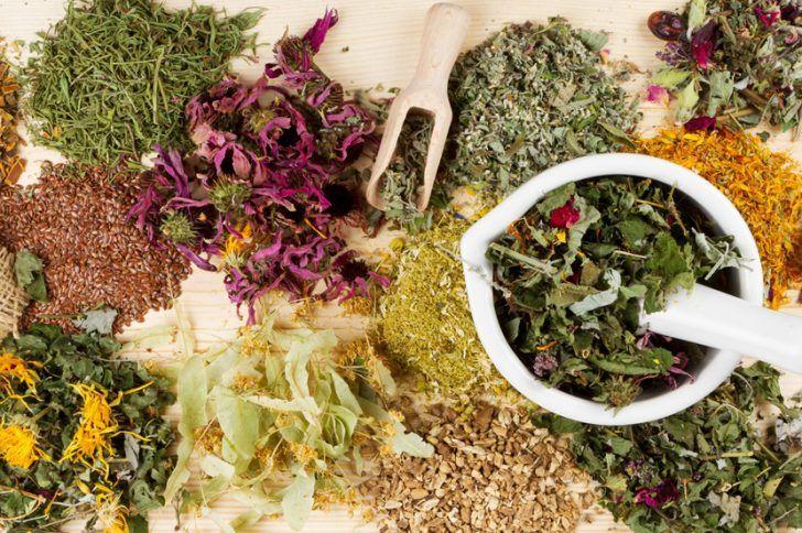 Травы в рецептах