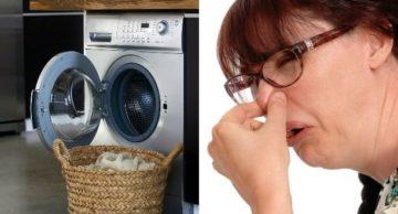 Как вывести и удалить запах пота с одежды